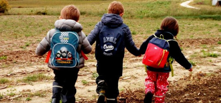 Scuole nel bosco, nuove risorse per le comunità di apprendimento