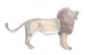il leone immagine